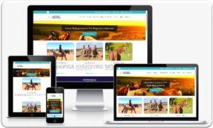 My Small Business Website Portfolio